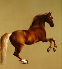 The most gorgeous of browns in the whole of Western Art - WHISTLEJACKET, Stubbs, 1762